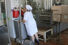 Transnistria Dairy Plant 10