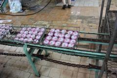 Transnistria Dairy Plant 13