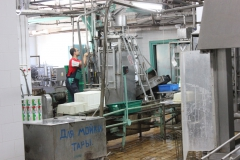 Transnistria Dairy Plant 18