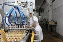 Transnistria Dairy Plant 19