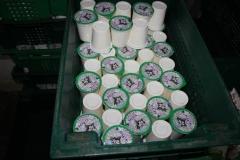 Transnistria Dairy Plant 30