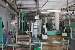 Transnistria Dairy Plant 8
