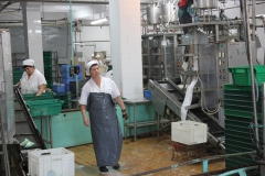 Transnistria Dairy Plant 9